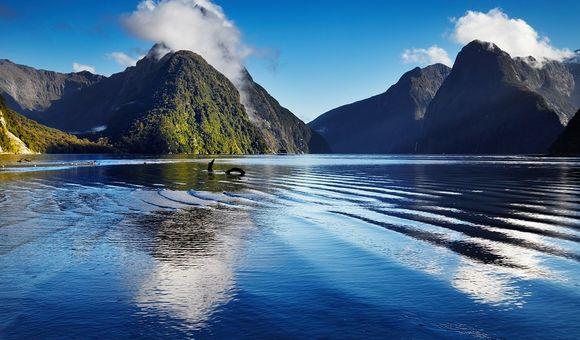 New Zealand Cruises 2019 2020 Exclusive Deals On Cruiseaway