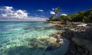 Caribbean,Canada and the USA East Coast,North America
